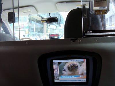 taxi+1