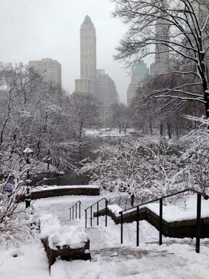 Central-Park-winter61