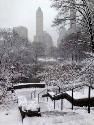 Central-Park-winter6